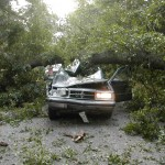This vehicle went into a tree that had fallen across the road. The tree had fallen after heavy rains from hurricane Isabelle.